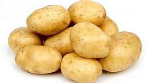 Tarım ve Orman Bakanlığından 50 bin ton patates ihracatına izin