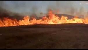 Konya'da ekin tarlasındaki yangını söndürmek isteyen tarla sahibi öldü