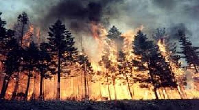 Ermenek'te orman yangını büyümeden söndürüldü