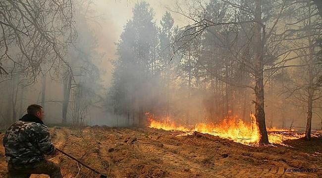 Ukrayna'nın doğusundaki orman yangınlarında 11 kişi öldü