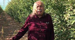 Karalgazi'de çiftçiler mermer ocağı istemiyor